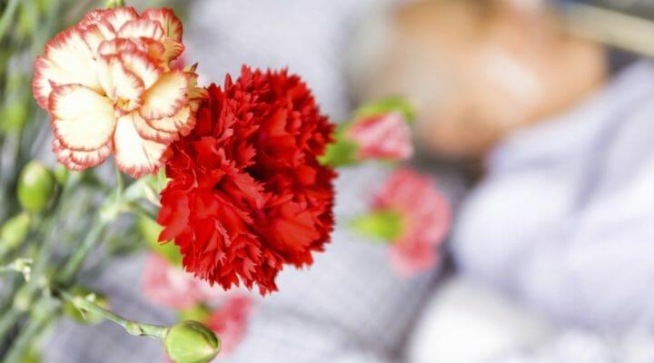 flowers in hospital room